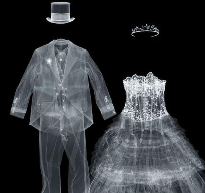Разные предметы в рентгеновских лучах (56 фото)