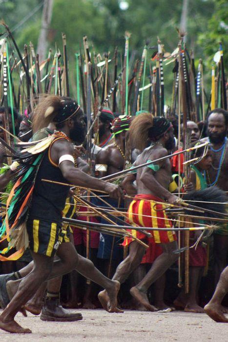 Война папуасов (13 фото)