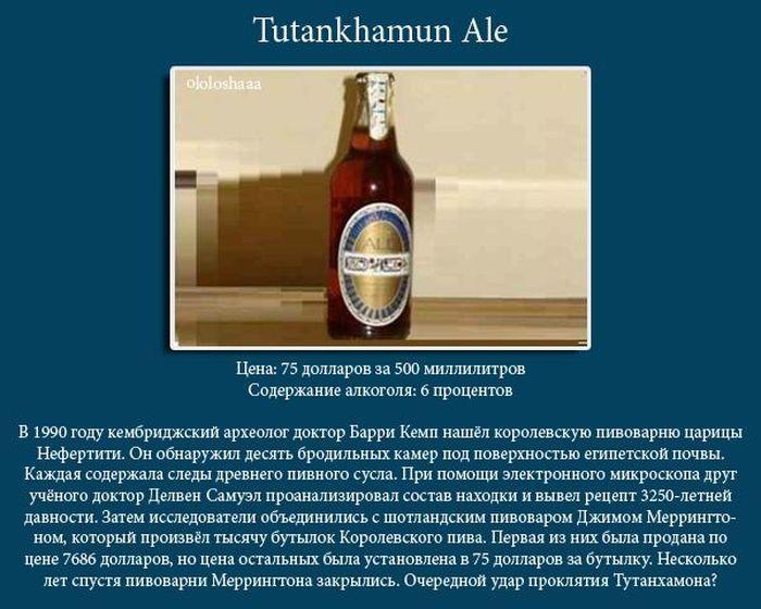 ТОП-10 самых дорогих сортов пива (10 фото)