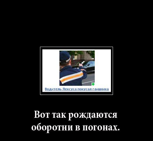 Надоедливые снимки с классными шуточными подписями (57 картинок)
