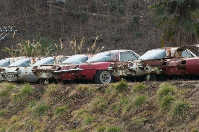Брошенные автомобили (72 фото)