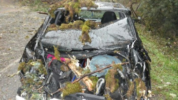 Крепкий кузов Subaru спас водителя от смерти (6 фото)