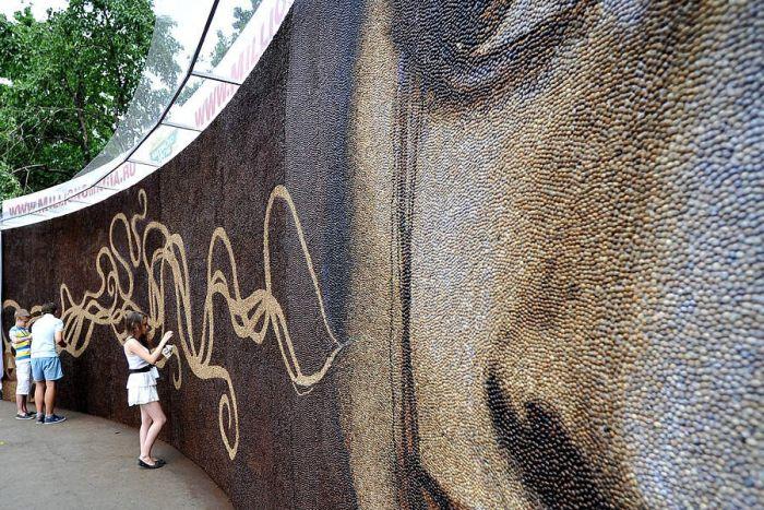 Самая большая в мире картина из кофейных зерен (7 фото)