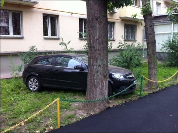 Постелили новый асфальт во дворе (3 фото)