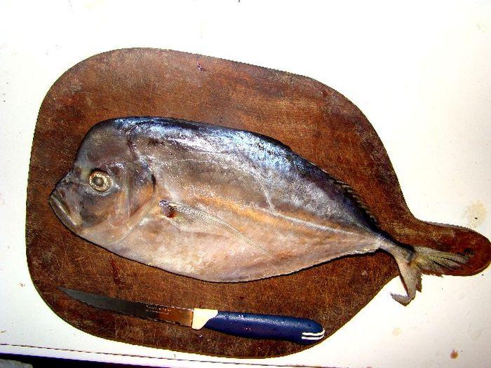 Мошенничество рыбной промышленности (13 фото)