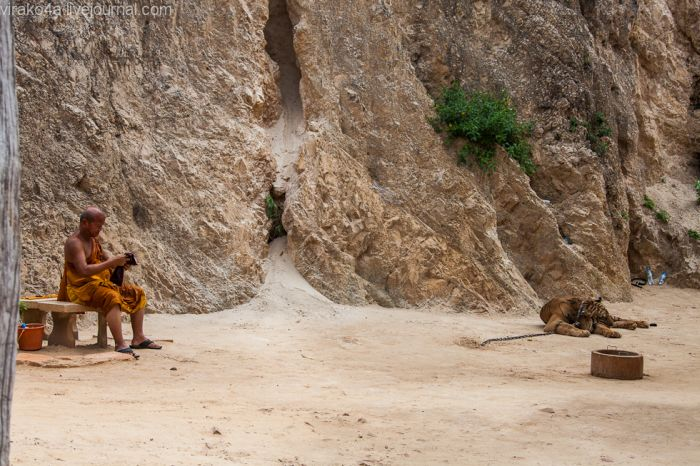 Тигриный монастырь (69 фото)