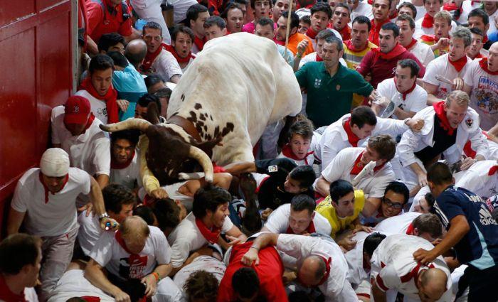 Сан-Фермин - опасный забег с быками (39 фото)