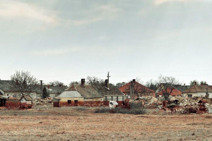 Трагедия в венгерском лесу (9 фото)