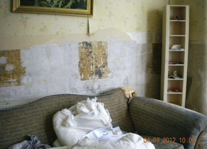 Жесткая месть арендодателю (12 фото)