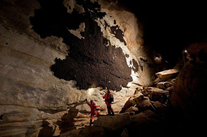 Загадка дня: стена в пещере (10 фото)