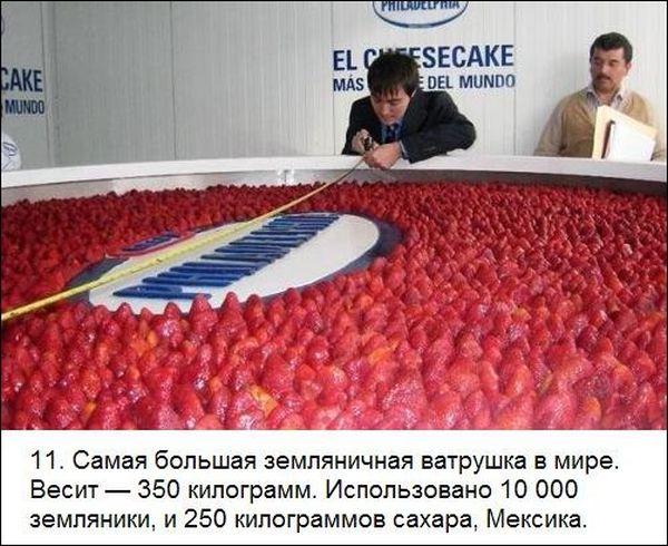 сколько весило самое большое печенье в мире