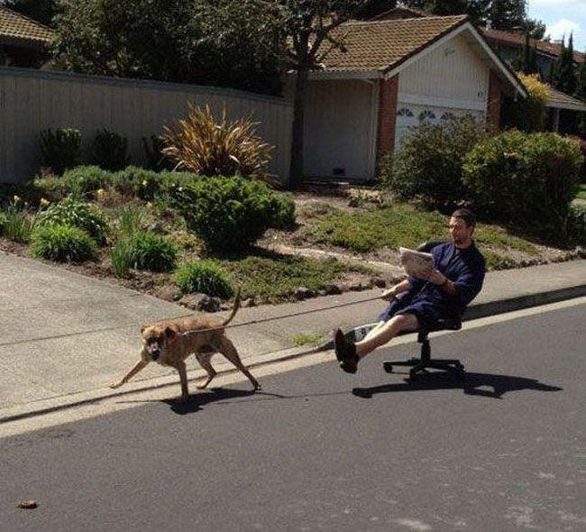 Ленивые люди (35 фото)