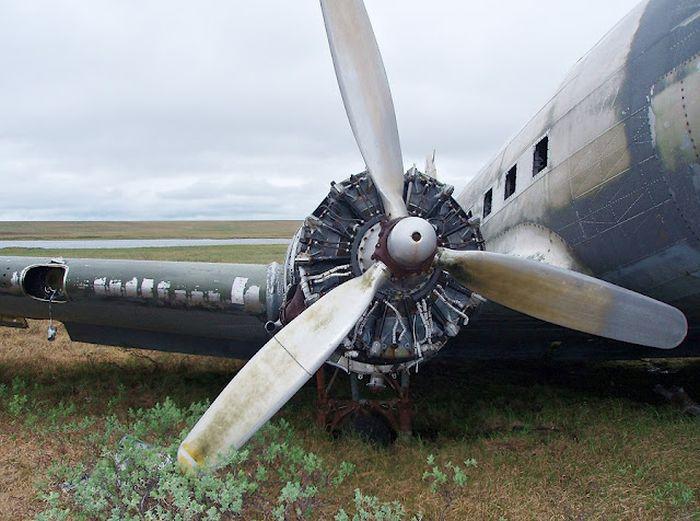Самолет, затерянный во времени (14 фото)