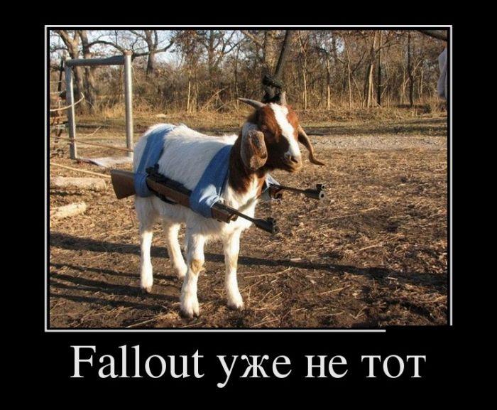http://de.trinixy.ru/pics5/20120725/demotivatory_04.jpg