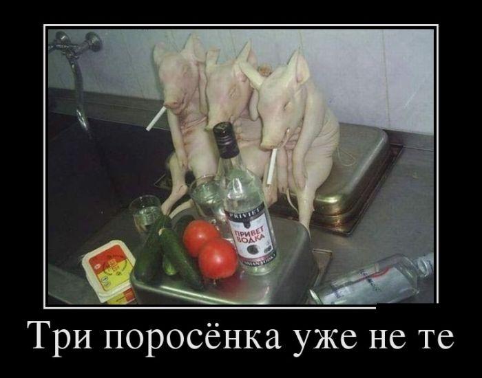 http://de.trinixy.ru/pics5/20120725/demotivatory_12.jpg