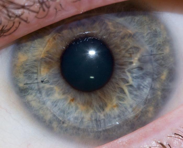 Тюнинг глаз (10 фото)