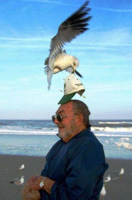 Gente haciendo cosas raras en las playas...