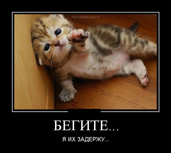 http://de.trinixy.ru/pics5/20120731/demotivatory_04.jpg