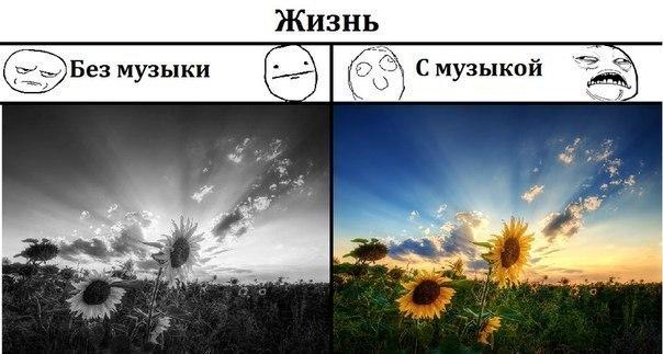 Прикольные картинки (135 фото)