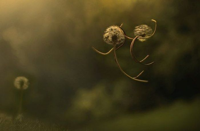 Необычные эмоциональные снимки (50 фото)