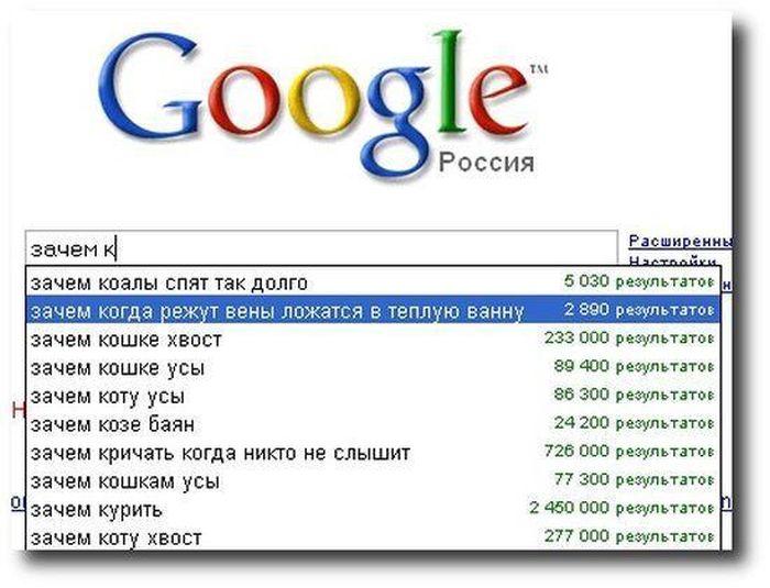 Самые нелепые и глупые запросы в поисковиках (52 скриншота)