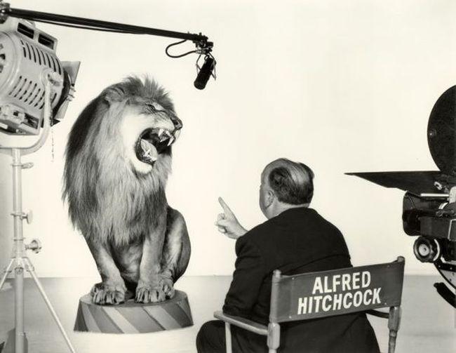 Как создаются спецэффекты в кино (11 фото)