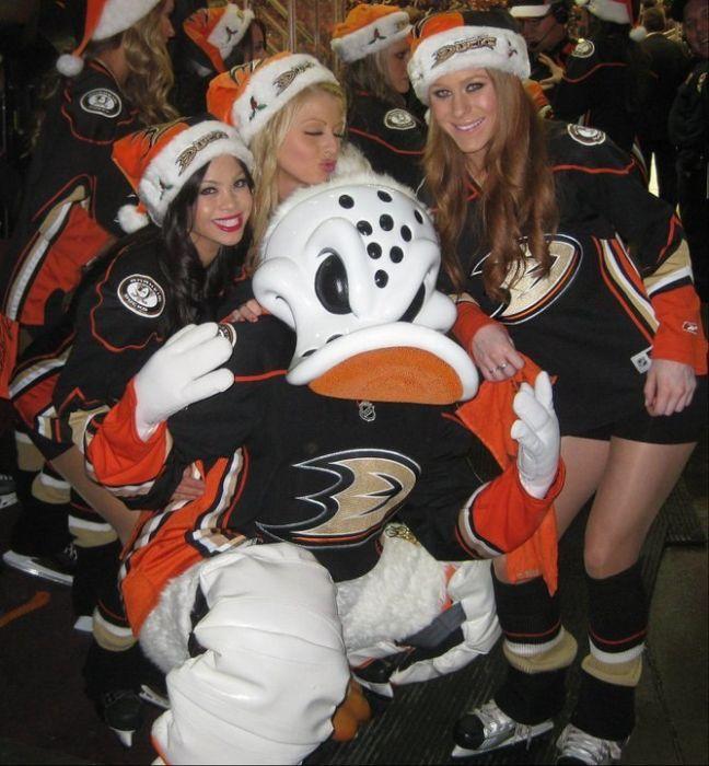 Странные фанаты NHL (41 фото)