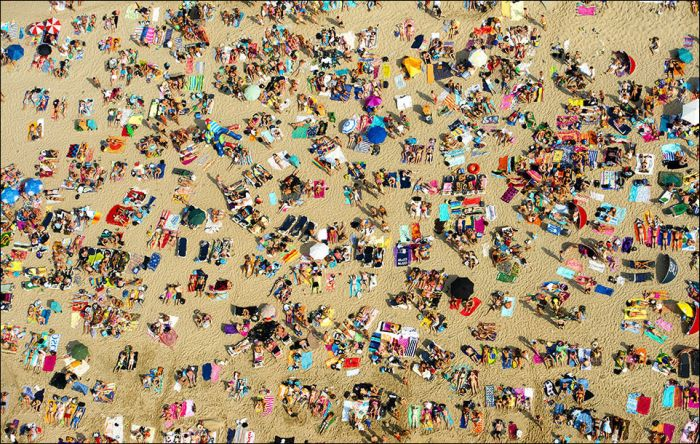 Лето с высоты птичьего полета (24 фото)