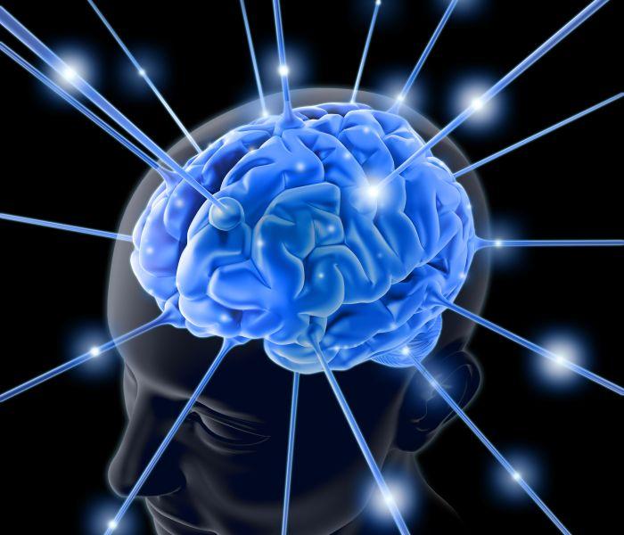 Необычные факты о работе нашего мозга...
