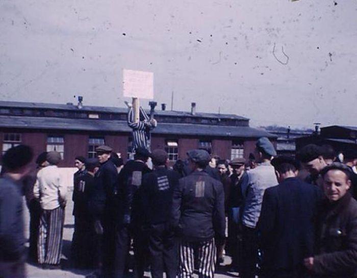 Архивные снимки из концлагеря Бухенвальд (10 фото)