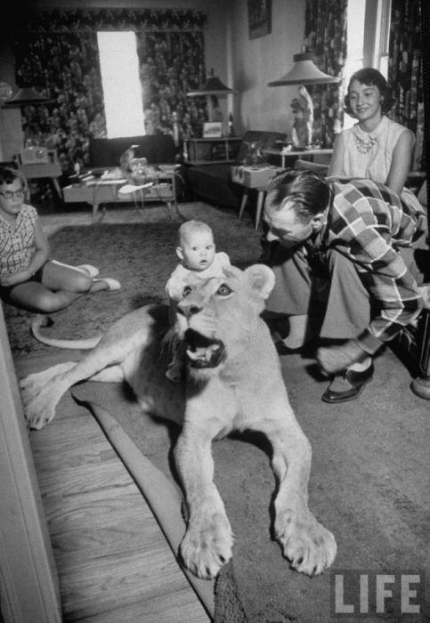 Необычные ретро фотографии (30 фото)