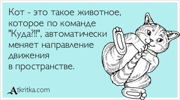 """Прикольные """"аткрытки"""". Часть 17 (30 картинок)"""