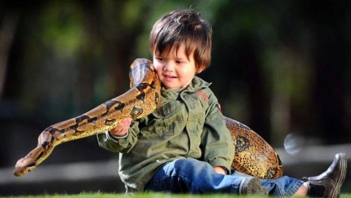 Необычные друзья двухлетнего мальчика (11 фото)