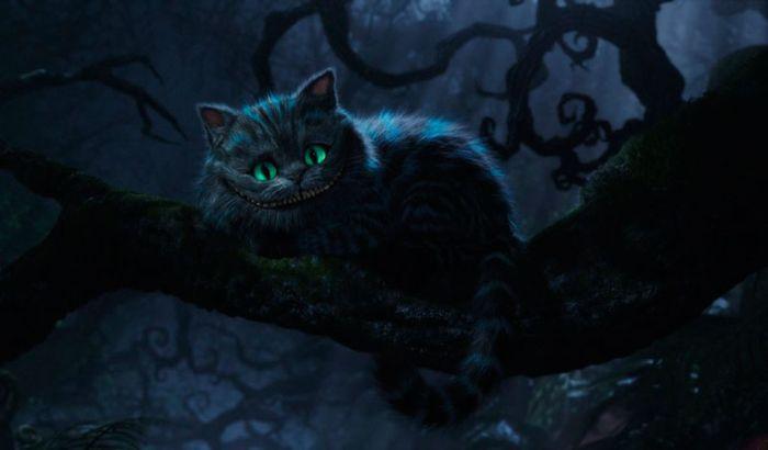 Родина знаменитого чеширского кота (31 фото)