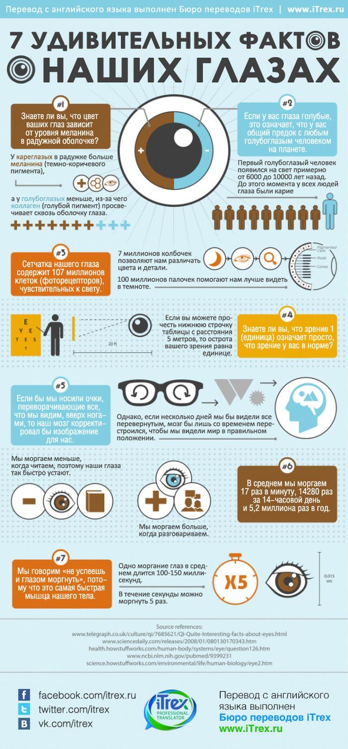 Факты о наших глазах (1 картинка)