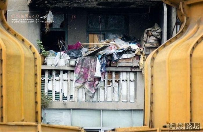 Почему надо регулярно убирать в квартире (8 фото)