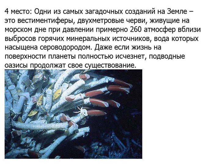 http://cdn.trinixy.ru/pics5/20120921/ufo_07.jpg