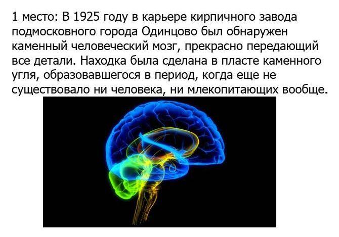 http://cdn.trinixy.ru/pics5/20120921/ufo_10.jpg