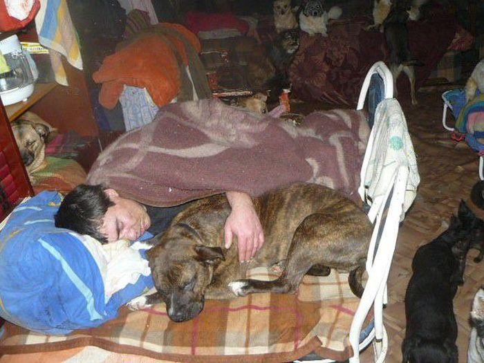 Излишняя любовь к животным (34 фото)