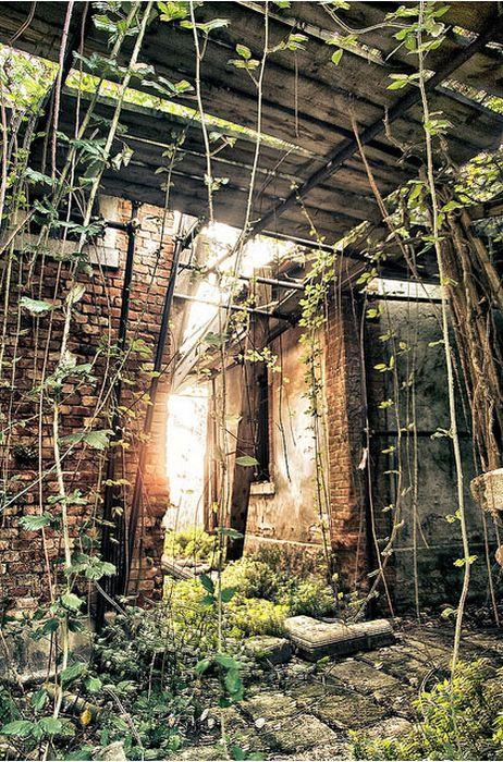 Тайна заброшенного острова Повеглия (27 фото)