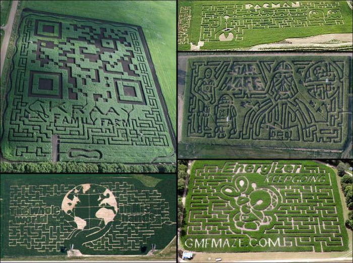 Невероятные рисунки и фигуры на полях (37 фото)