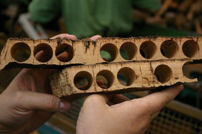 Şişeler için Kullanılan Mantar Tıpa Nasıl Yapılır?