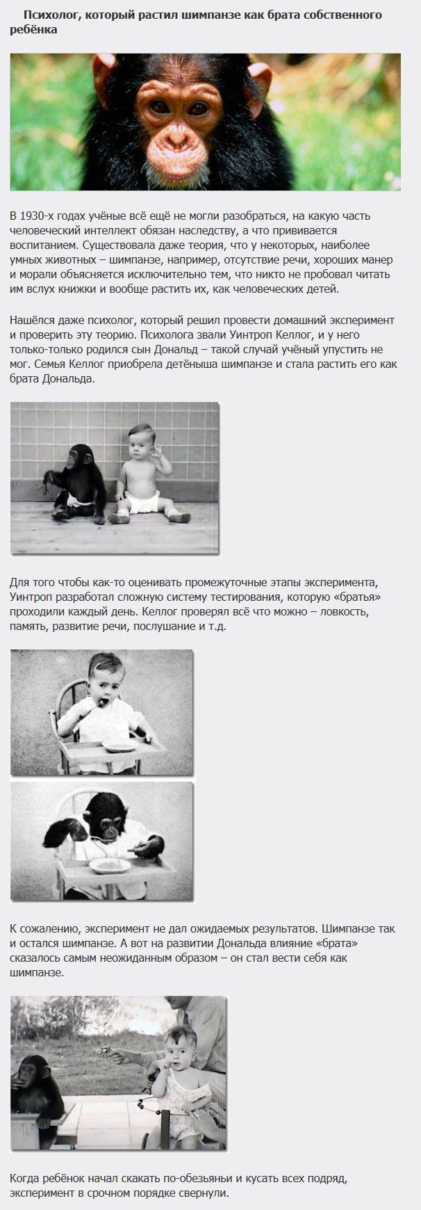 ТОП-5 самых ужасающих экспериментов над детьми (5 фото)