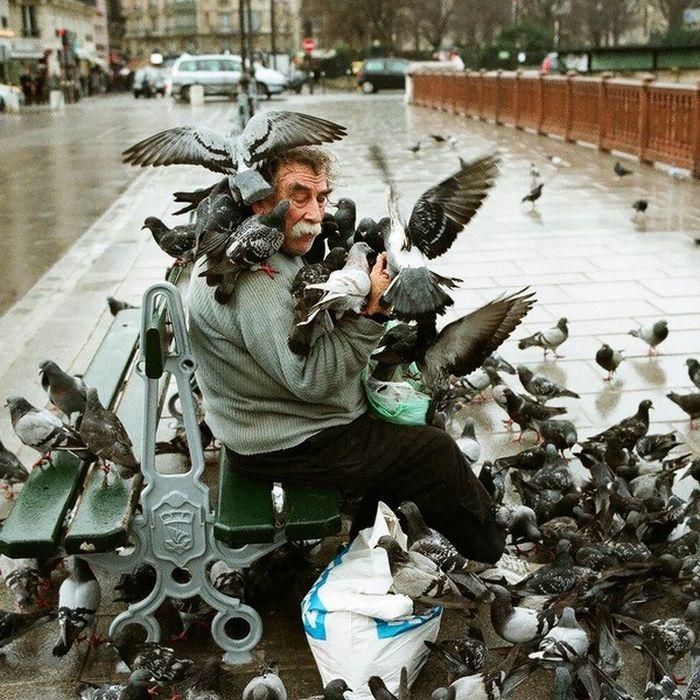 Такое можно увидеть только в России (51 фото)