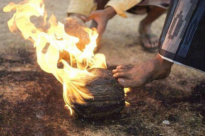 Что можно сделать с горящим кокосом (13 фото)