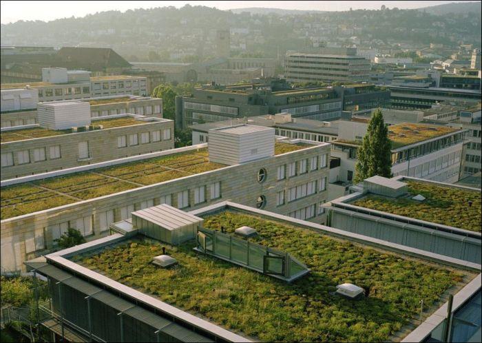 Gökdelen ve Apartman Teraslarında Bahçeler(47 Fotograf)