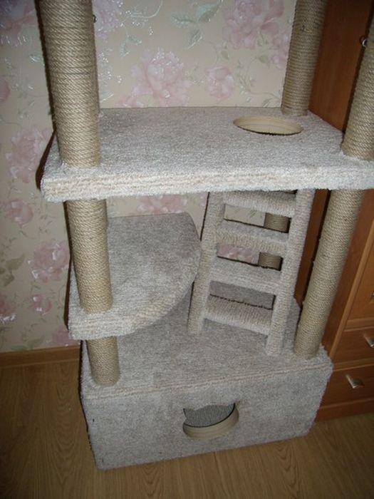 Строим домик для любимого котика (40 фото)