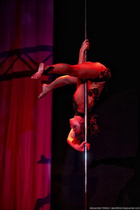Отчет с состязания по стрип-пластике и Pole Dance (57 фото)