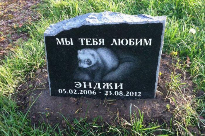Подмосковное кладбище домашних животных для олигархов (24 фото)