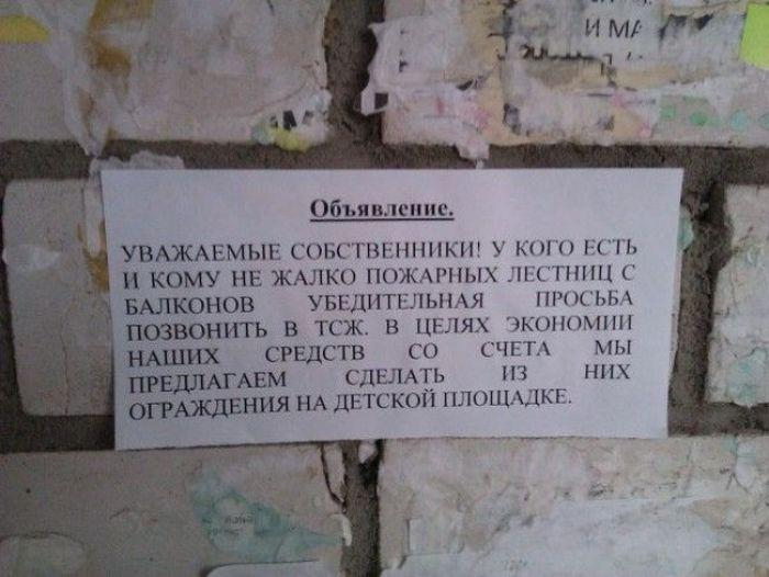 Смешные надписи (36 фото)